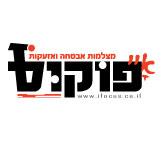עיצוב לוגו מקצועי פוקוס מצלמות אבטחה | אורית חזון מנדל